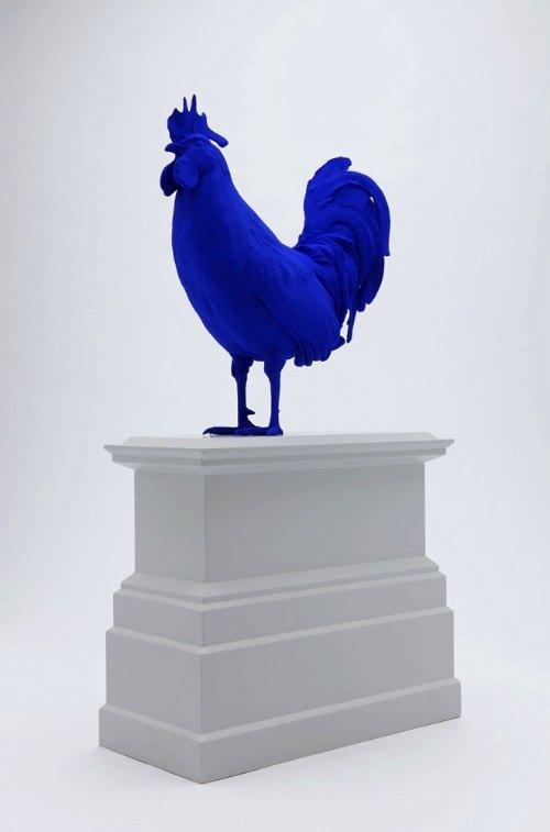 Hahn : Cock_02