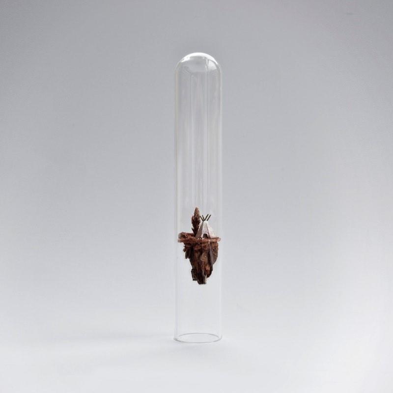 Baseada em Amsterdam, a diretora de arte e design Rosa De Jong cria pequenas esculturas que são quase mundos em miniatura dentro de tubos de ensaio. O projeto recebeu o nome de Micro Matter e é mais um projeto de diorama que aparece aqui no blog.