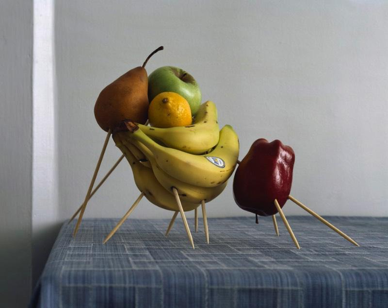 Mauricio Alejo é um artista e fotógrafo mexicano que passou os últimos 16 anos de sua carreira trabalhando com fotografia de um jeito um pouco diferente do que você espera. Ele fotografa objetos ordinários do dia a dia e os transforma em objetos peculiares e especiais.