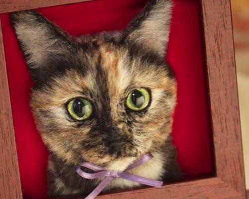 Retratos de Gatos feitos de Feltro direto do Japão via @pristinaorg
