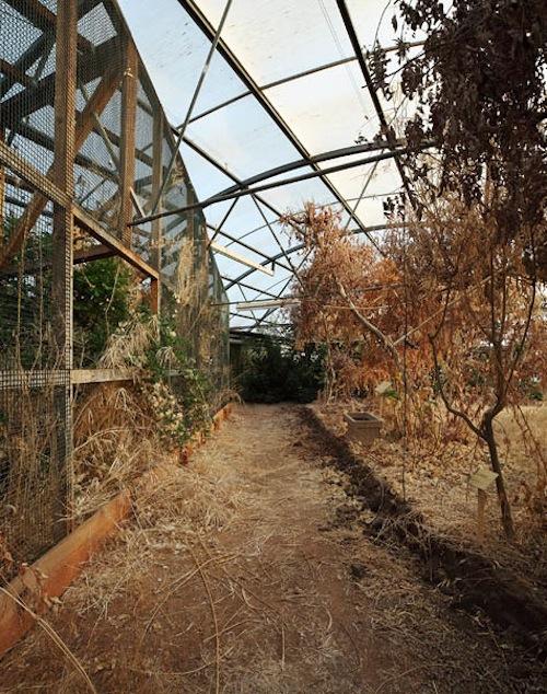 A Decomposição da Biosphere 2