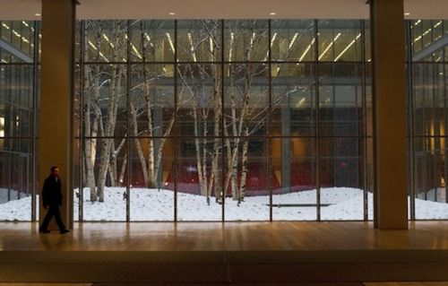 The New York Times Building Lobby Garden