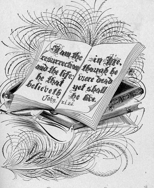 Se você é fã de caligrafia, já sei que você vai amar essa compilação de livros raros que vão de 1800 até o início dos anos 1900. Tudo compilado e liberado para download pelo pessoal da International Association of Master Penmen and Teachers of Handwriting.