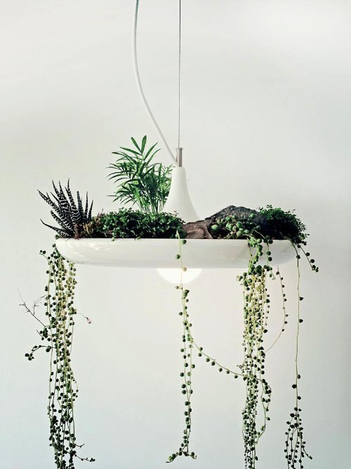 babylon suspended garden light fixture by studio O:I_01