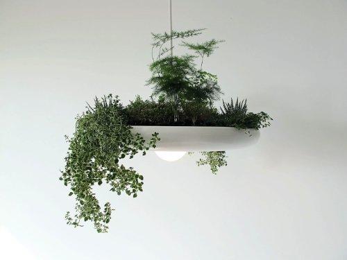 babylon suspended garden light fixture by studio O:I_03
