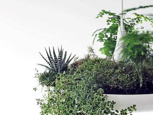babylon suspended garden light fixture by studio O:I_04
