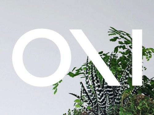 babylon suspended garden light fixture by studio O:I_05
