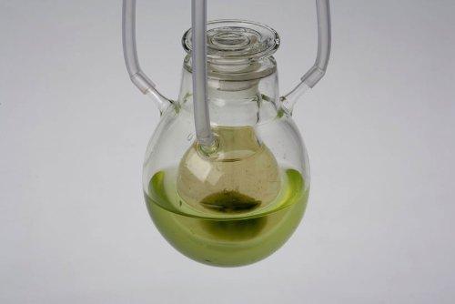 Algaerium Bioprinter_05