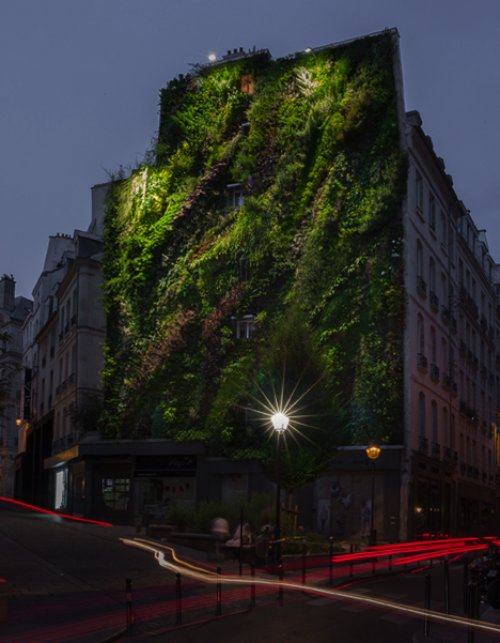 L'Oasis D'Aboukir Green Wall in Paris_00