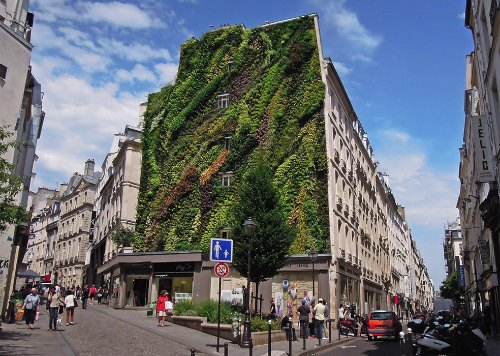 L'Oasis D'Aboukir Green Wall in Paris_01