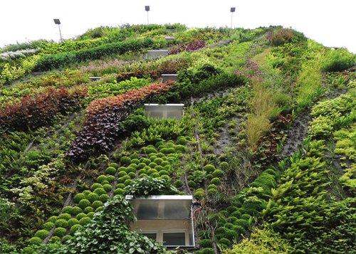 L'Oasis D'Aboukir Green Wall in Paris_03