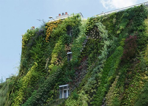 L'Oasis D'Aboukir Green Wall in Paris_05