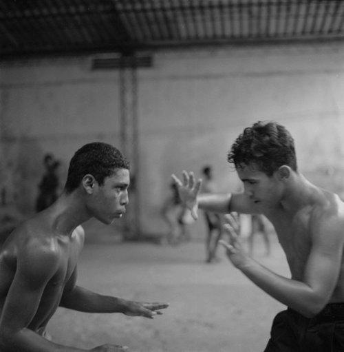 La Lucha by Laurence Salzmann_02