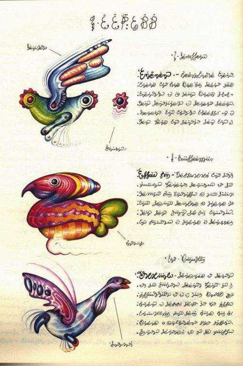 Codex Seraphinianus_08