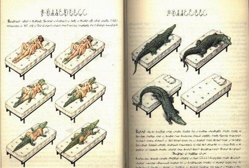 Codex Seraphinianus_11