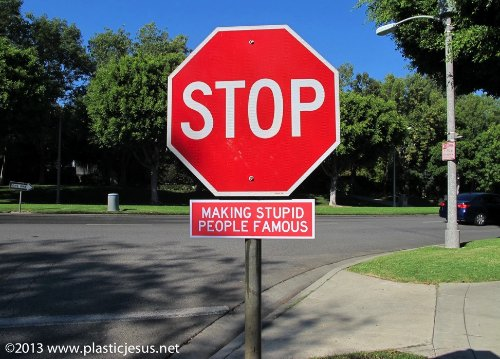 Stop Making Stupid People Famous_05