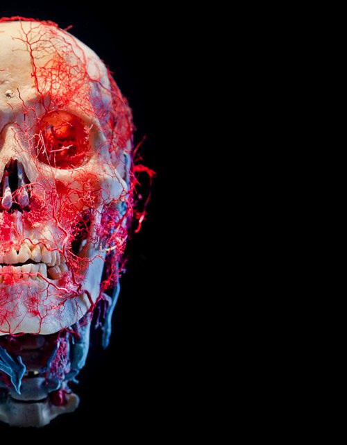 Bodies&Skulls_theNewCruelty_00