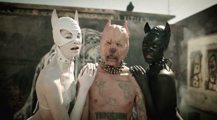 Pitbull Terrier do Die Antwoord 04