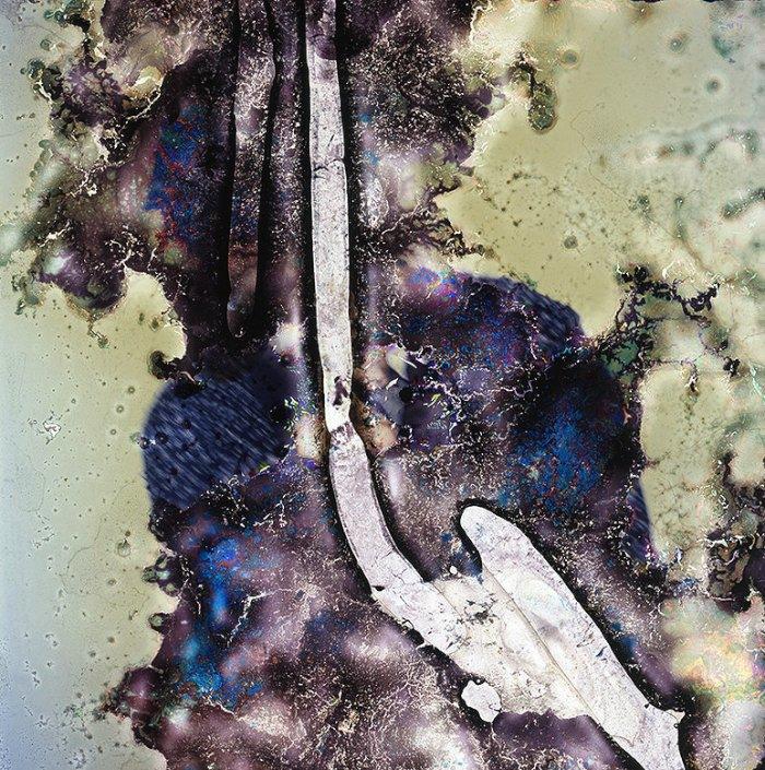 Em sua série Impermanência, Impermanence em inglês, o fotógrafo e microbiologista Seung-Hwan Oh resolveu usar de fungos em seus filmes. Fungos que ele mesmo cultivou, preciso dizer aqui. Através desse processo um pouco peculiar, os microorganismos vão lentamente devorando o filme e criando um resultado final bem abstrato e que me lembrou muito o glitch digital.