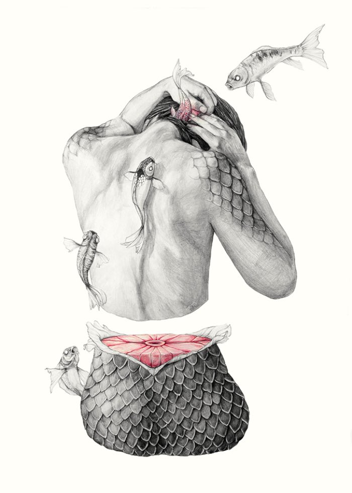 Metamorfish-Elisa Ancori 05