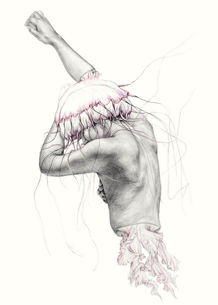 Metamorfish-Elisa Ancori 08