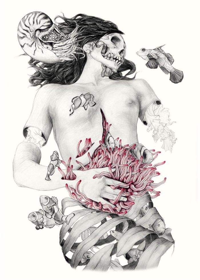 Metamorfish-Elisa Ancori 09