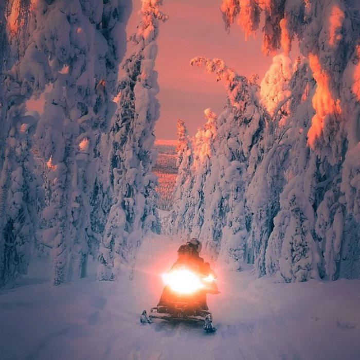 Quando fui pela primeira vez para a Finlândia em Setembro de 2014, fui com um grupo de blogueiros de viagem com a função de explorar a cidade de Porvoo. Foi lá que eu conheci o Konsta Punkka, o semi deus do instagram que foi descrito para mim como o squirrel whisperer. Esse termo não fez sentido algum para mim até eu ir ao seu instagram e ver as fotos que ele tira. Acabei tendo a sorte de sair para tirar fotos de uma quase aurora boreal em Porvoo e vi que ele realmente sabe o que está fazendo.