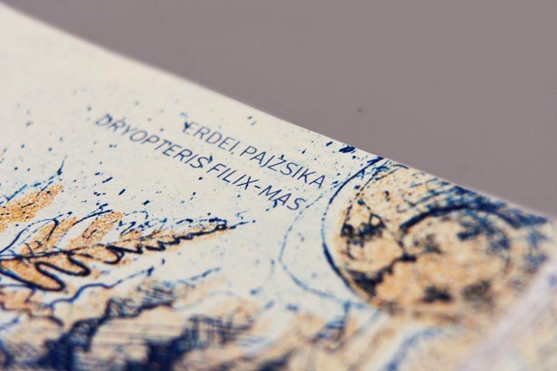 Hungarian Euro de Barbara Bernat 05