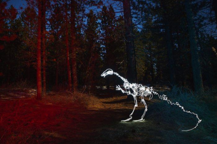 Darren Pearson usa da sua câmera e de uma lanterna para pintar com luz. E, com isso, ele imagina um mundo diferente repleto de estranhas criaturas vivendo no meio de cidades. De dinossauros a caveiras feitas usando pedaços de prédios, passando por bonsais iluminados e esqueletos que dançam, esse é o mundo iluminado que Darren Pearson cria com suas fotos e vídeos.