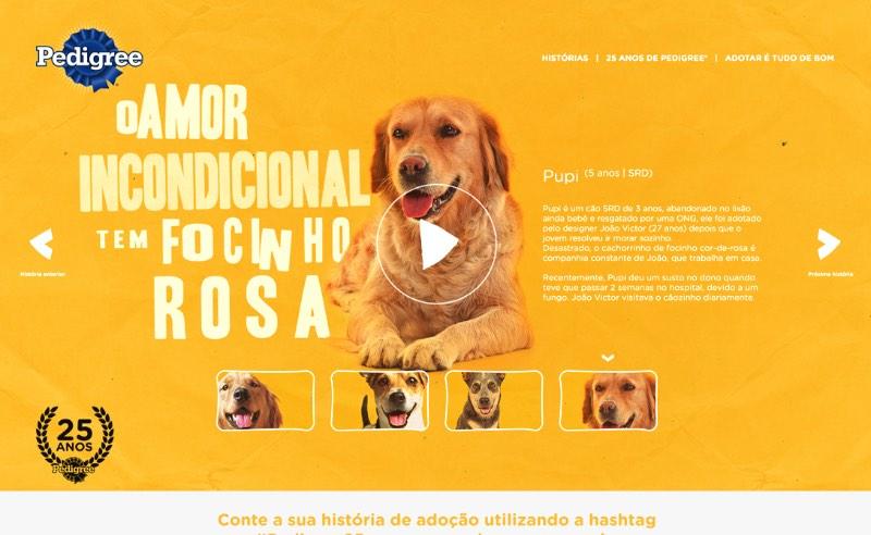 Rodrigo F Campos é um dos diretores de criação da RIOT, maior agência digital independente do Brasil. E seu portfólio mostra muito bem o por quê disso. Nele você vai ver belíssimos projetos digitais para clientes como Itaú, Diesel, Habib's, Renault, Canon, Pedigree, Parmalat e muitos outros.