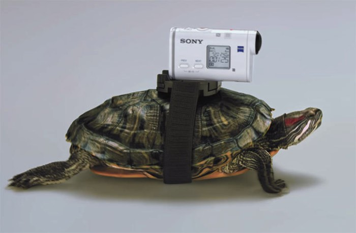 A dupla de diretores holandeses conhecidos como Lernert and Sander sabe como transformar tecnologia em algo interessante. No caso da nova Sony Action Cam, eles fizeram isso ao prender algumas câmeras em tartarugas que filmaram alguns cachorros correndo. Faz sentido? Não sei mas sei que gostei muito do vídeo que você pode ver logo abaixo.