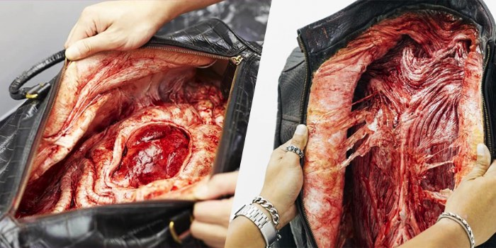 Os visitantes de uma loja de produtos criados com couro exótico em um shopping de Bangkok não reagiram muito bem quando foram surpresos com uma campanha da PETA. Behind the Leather é o nome dessa campanha que mostra a realidade por trás dos produtos criados com couro de um jeito que você não vai esquecer.