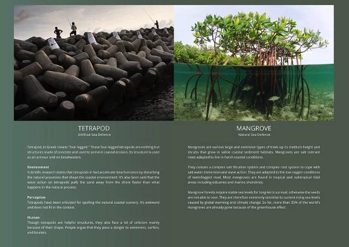O TetraPot é uma estrutura de concreto feita para ajudar a impedir a erosão causada pelos força do mar nas costas do mundo. A ideia é usá-los para aumentar e preservar os mangues que costumavam cobrir grandes partes da área costeira do planeta.