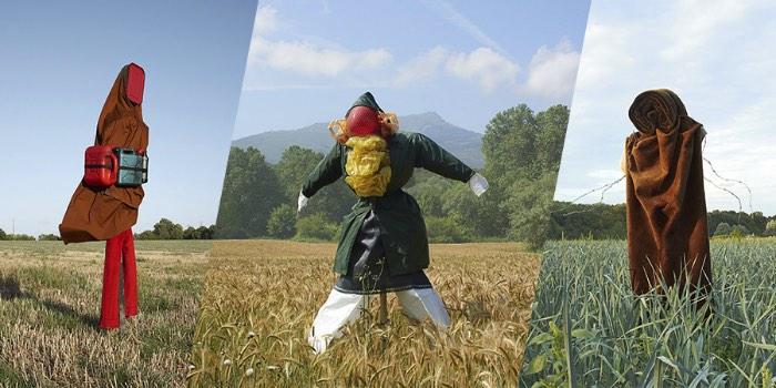 Scarecrows, Espantalhos em português, é uma série de fotografias onde Kate Fichard explora essa tradição que anda se perdendo com os avanços tecnológicos dos dias de hoje. Criado em colaboração com o artista plástico Hugo Deniau, as fotografias aqui surgiram da percepção que a tradição de observação de animais anda desaparecendo na França. Foi assim que tudo começou para Kate Fichard.