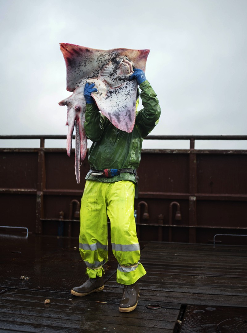 Corey Arnold é um fotógrafo que trabalhou muitos anos como pescador nas águas frias do Alaska. Foram nas águas escuras do Estreito de Bering que ele criou seu projeto chamado Aleutian Dreams, onde ele documenta a vida e o trabalho nesse local distante do resto do mundo. Lá, você vê raposas, águias e todos aqueles pássaros que querem se alimentar da difícil pesca que acontece em um cenário tão especial quanto esse.