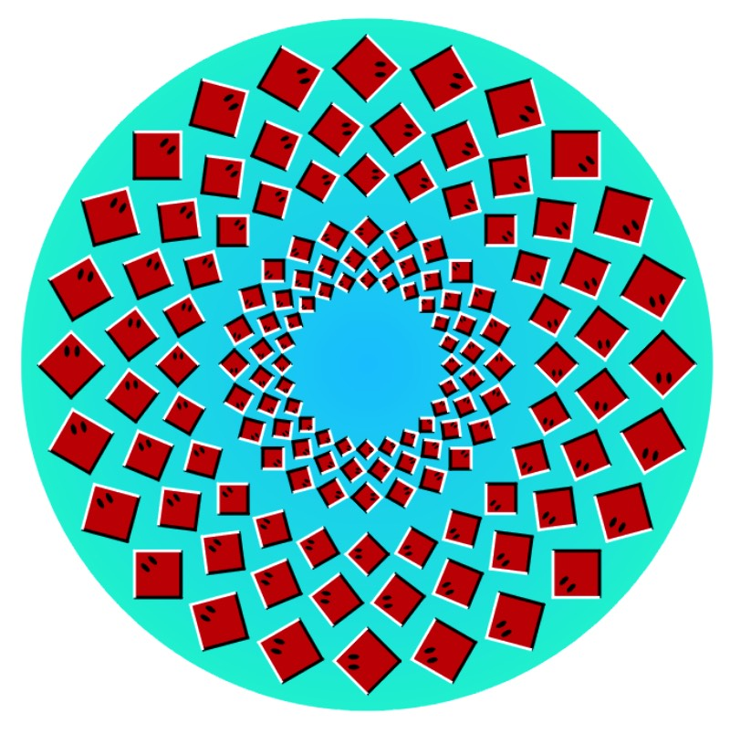O professor Akiyoshi Kitaoka da Universidade de Kyoto já passou mais de uma década da sua vida trabalhando com a criação de ilusões de óticas e você pode ver algumas das suas imagens logo abaixo.