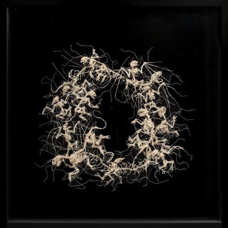 Nunca imaginei que estaria fazendo um artigo aqui que incluiria crochê mas estamos aqui mudando o mundo com a arte de Caitlin McCormack. Essa artista americana, baseada em Philadelphia, parece simular espécies científicas que ela cria usando de linhas, materiais têxteis e muita cola.