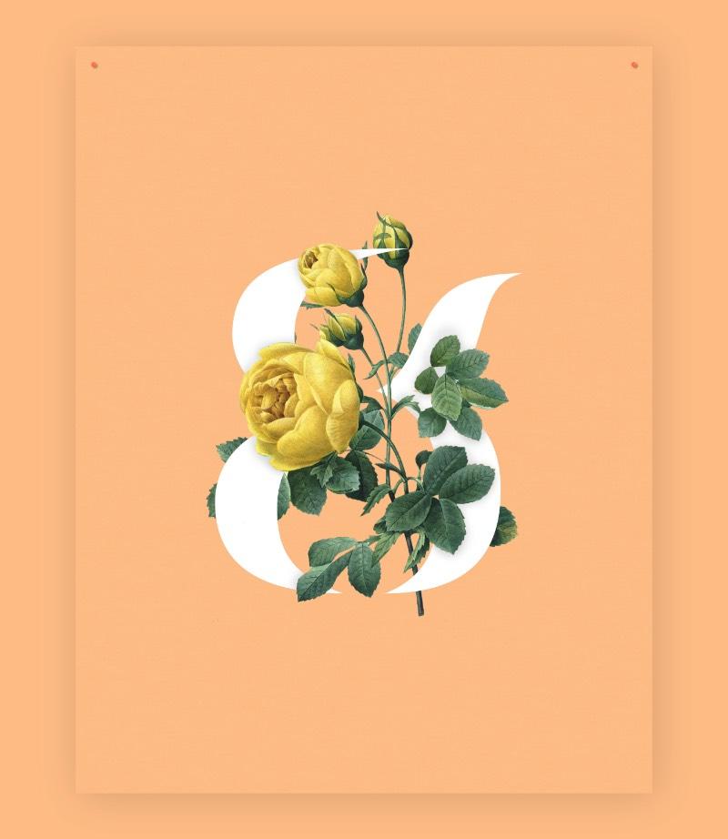 Casa Stencil é uma belíssima fonte stencil que é apresentanda com curvas elegantes que apresenta quase um senso de erosão. Tudo por culpa da geometria de suas formas criadas pelo designer e diretor de arte canadense Mathieu Desjardins.