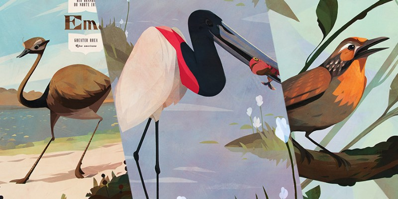 Pássaros do Brasil é um projeto ilustrado celebrando a incrível fauna brasileira. Afinal, o Brasil tem mais de 1.800 espécies diferentes e confirmadas, fazendo do país um dos ecossistemas mais ricos quando se trata de aves.