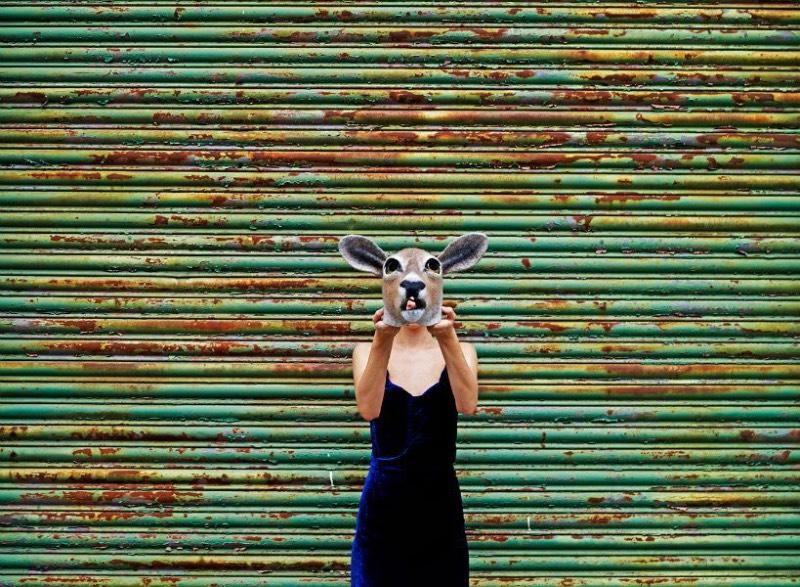 Feltro é um tecido que é criado através de um longo e íntimo processo onde as fibras de lã se mistura com água e sabão até se tornar algo que pode ser maleável e moldado em diferentes formas. Foi esse o material que Gladys Paulus resolveu utilizar para criar suas máscaras de animais e outros trabalhos que ela faz. Porém, aqui nesse artigo, só vou falar e exibir seu trabalho de máscaras de animais.