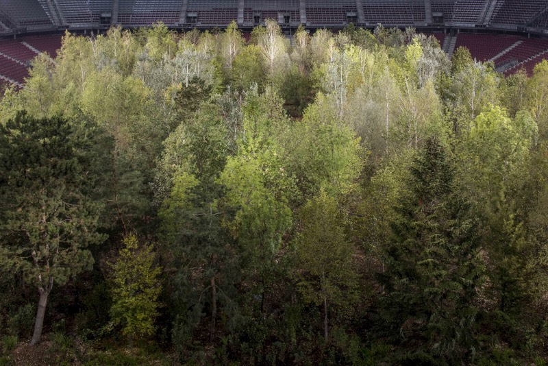 For Forest foi concebida pelo curador suíço Klaus Littmann e a inspiração por trás disso veio de uma ilustração distópico criada pelo artista e arquiteto austríaco Max Peintner. A arquitetura da paisagem foi supervisionada pela Enea Landscape Architecture. E tudo isso foi criado para criar uma conversa, uma discussão sobre os problemas que temos hoje em dia com a crise climática e o desflorestamento.