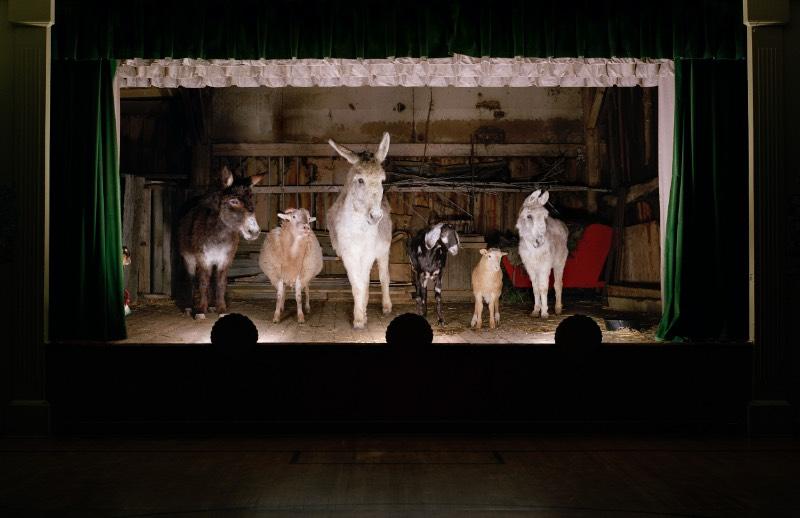The Dog & Pony Show surgiu de uma reação a maioria da fotografia de moda que Rob MacInnis via por ai. No seu ponto de vista, esse estilo fotográfico não era nada mais do que um processo de exploração das físico de uma pessoa e da definição de prioridades baseado nesses valores físicos. Pensando nisso, ele resolveu virar sua câmera para aqueles criaturas que são mais exploradas na nossa sociedade.