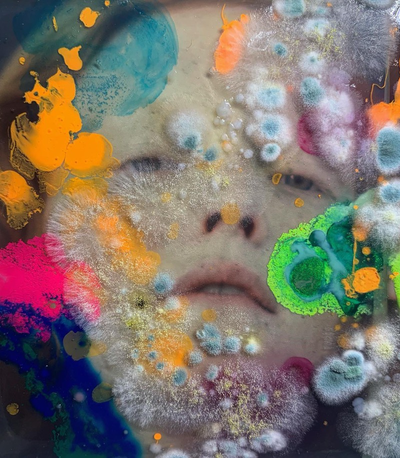 As imagens que você vai ver aqui não vem de distantes planetas e nem são renderizações digitais criadas de forma criativa. Elas são parte do trabalho de microbiologia de Dasha Plesen e ela usa alimentos, tintas, pigmentos e culturas de fungos e bactérias para criar o que você vai poder ver aqui.